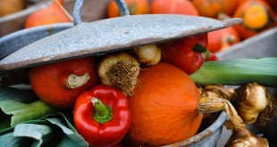 All you need for Pumpkin soup, as always give it a fresh start and use the best ingredients you can find.